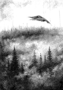 ptak łowny